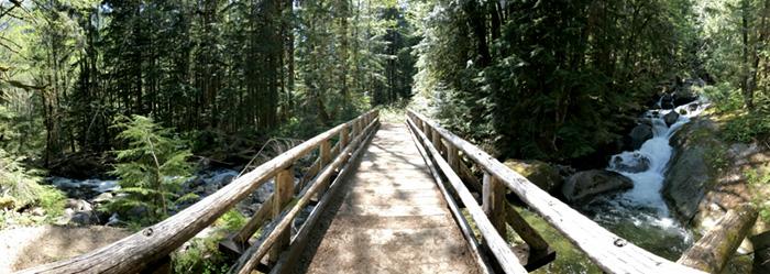 Footbridge Across Marten Creek
